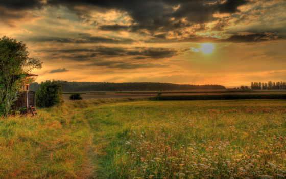 закат, поле, harold, torsen, трава, фон,