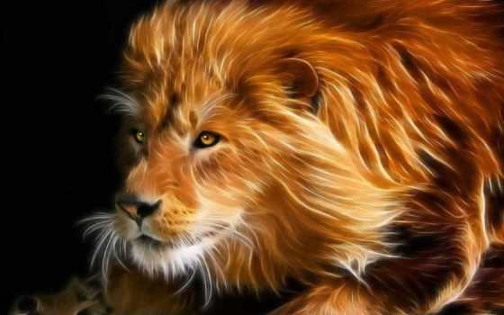 lion, pinterest, art, работать, more, хищник, see,