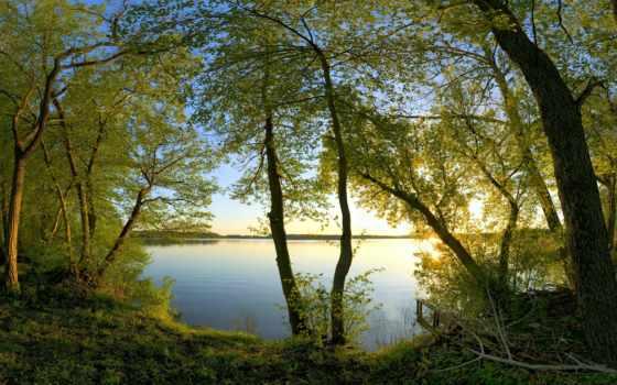 озеро, малиновый, закат, trees, районе, регистрации, bez, природа, красивые, есть, android,