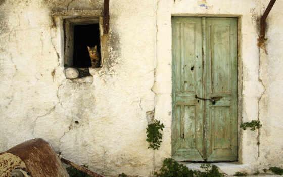 кот, house, drawing, окно, casa, антигуа, пуэрта, тег, дверь, destroy, black