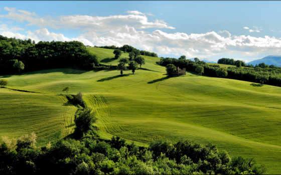 hills, трава, природа