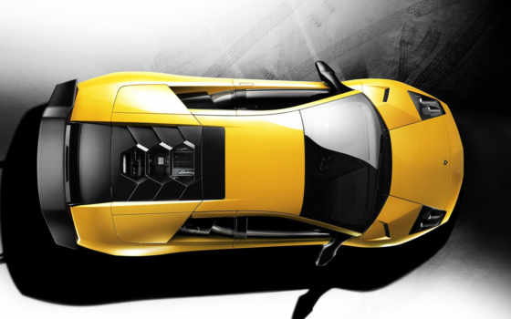 lamborghini, взгляд, murcielago, глаз, cars, birds, car, superveloce,