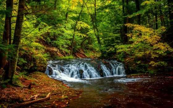 natureza, imagens, árvores, fotos, parede, papéis, cachoeira, fundos, rio,