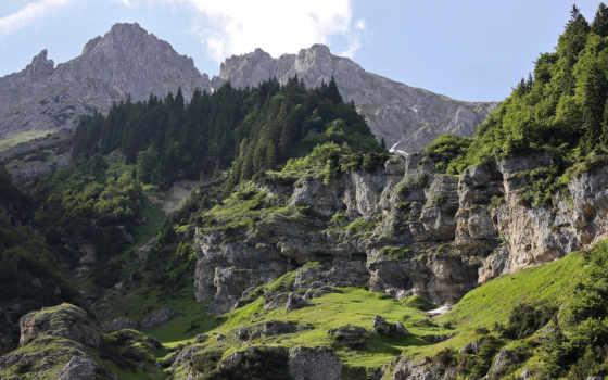 пейзажи -, лес, удивительные, горы, леса, бесплатные, landscape,