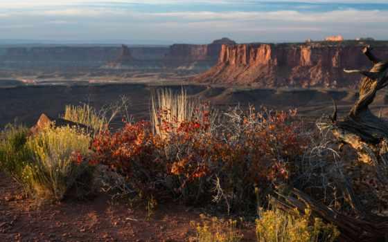 landscape, national
