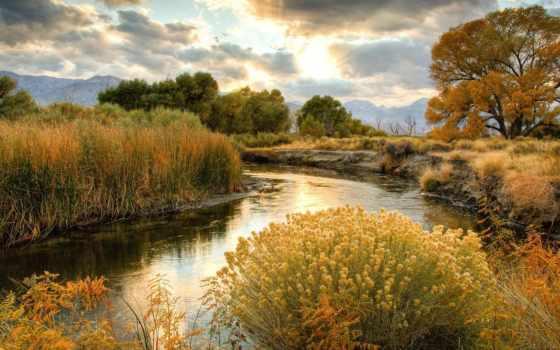 река, осень, трава