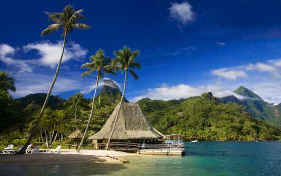 берегу, моря, lodge, солома, горы, пальмы,