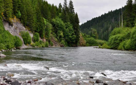 sungai, hintergrundbild,