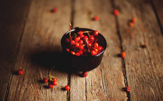 ягоды, рябина, доски, чаша, browse, rowanberry, winter, снег, дерево, красные,