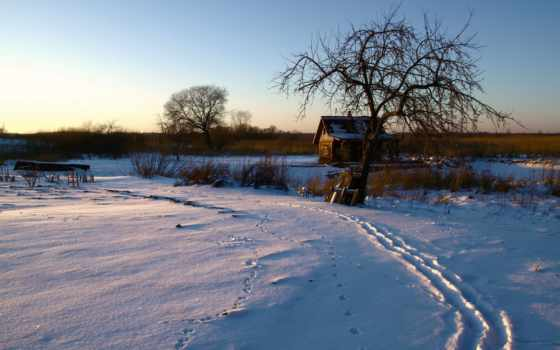 traces, winter, снег, утро, макро, минимализм, дек, ск,