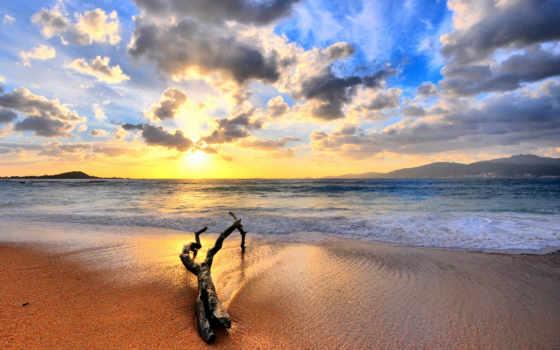 пляж, берег, оформление, indii, небо, море, красивый, рисунок, water, sun