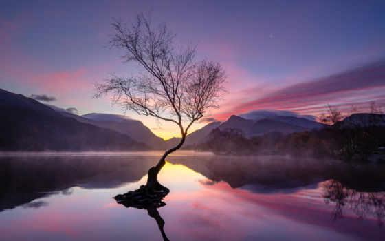 , закат, озеро, горы, дерево,