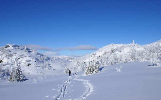 снег, winter, sun Фон № 75786 разрешение 2560x1600