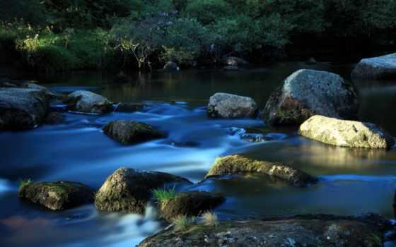 высоком, ручей, река