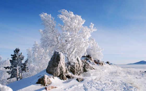 trees, снег, winter, поле, снегу, камни, нояб, js, фото,