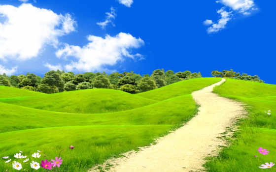 summer, тропинка, cvety, trees, луг, поле, небо, sun, лесу, трава, лес,