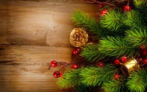 елка, new, год, christmas, шишки, ветки, праздники, ёль, новогодняя, branch,
