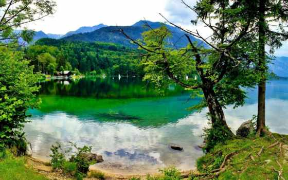 scenery, bled, лес, bohinj, горы, mount,