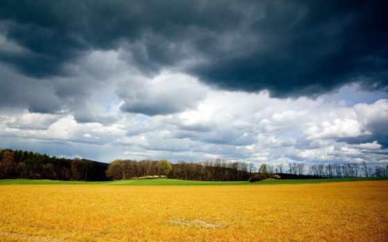 серое, небо, тучи, поле, хмурое, oblaka, грозовые, summer, август, yellow, скошенная,