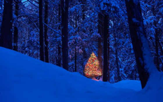 new, год, winter Фон № 53273 разрешение 2000x1333