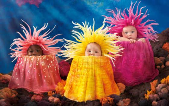море, anne, geddes, art, anemones, anemone, pinterest, под, об, canvas,