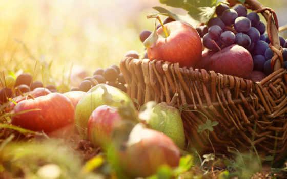 фрукты, производить, свежие, продукты, корзина, spas, стоковое, яблочный, фотообои,