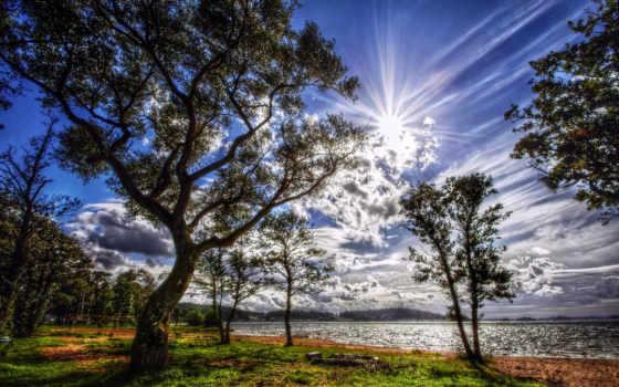 красивые, природа, природы, небо, sun, телефон, browse, закат, горизонт, trees,