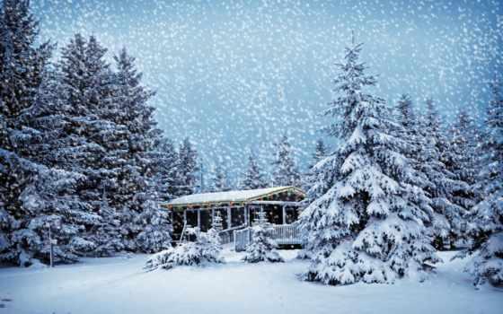 лесу, зимнем, house