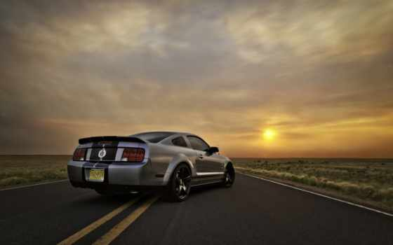 ford, shelby, mustang Фон № 56118 разрешение 2560x1600
