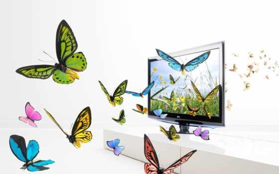 бабочки, телевизоре, графика