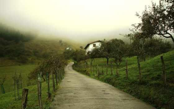 paisajes, campo, profundidad, naturaleza, pantalla, alberga, niebla, fondo, fondos, para,