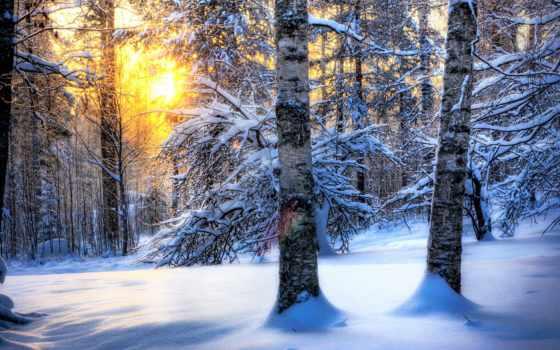 природа, весна, winter, summer, природы, осень,