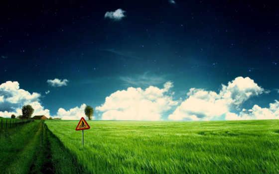 трава, во, облако