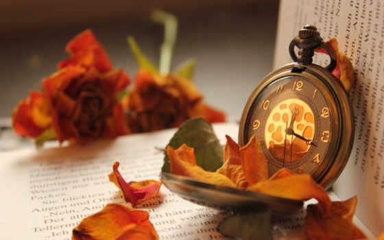 цветы, книга, часы, карманные, розы, лепестки,