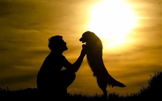 собака, парень, друзья, силуэт, sun, закат, настроение, свой, hug,