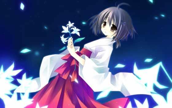 yosuga, sora, аниме, amatsume, akira, картинку, картинка, âþ,