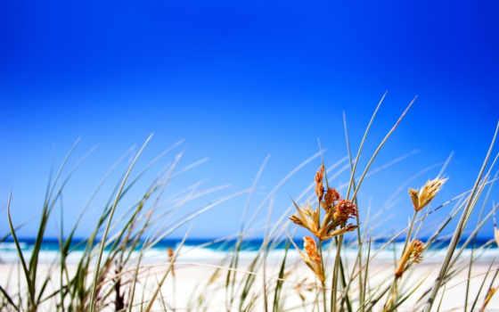 пляж, free, desktop