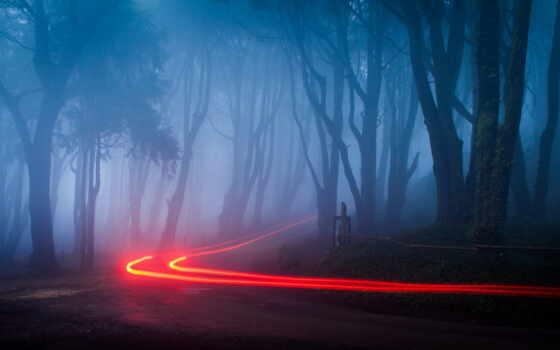 fore, foggy, aesthetic, огонь, туман, дорога, осень, awesome, urban, тропинка, природа