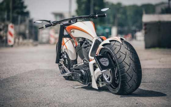 мотоцикл, chopper, popularity, color, random, custom, тоже, russian