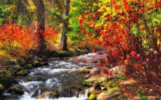 herbst, осень, natur, природа, hintergrundbild, бах, bilder, house, wälder, rushing,
