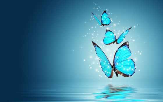 бабочки, бабочка, tochka, oboi, живые, телефон, весна, yukle, live,