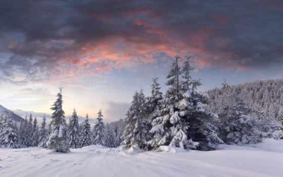 winter, елки, снег, лес, oblaka, рассвет, холмы,