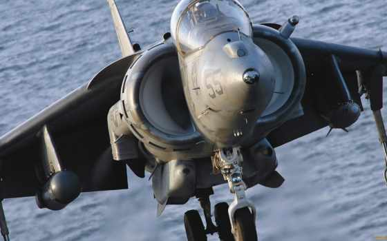 harrier, marine, attack