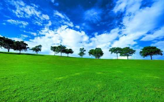 thiên, hành, nhiên, nın, фотообои, трава, небо, горы, день,