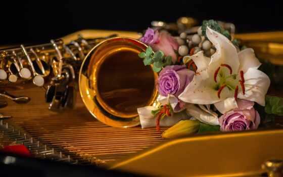 музыка, цветы, instrument, lily, саксофон, букет, фон, mobile, музы, black, фото