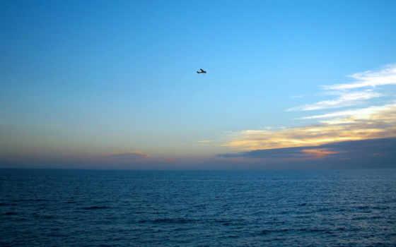 полет, самолёт Фон № 16459 разрешение 1920x1200