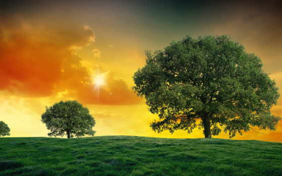 солнца, дневник, красивые