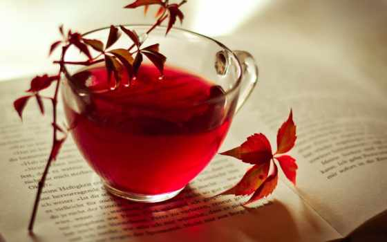 осень, книга, cup, листва, чая, красные, бордовые, картинка,