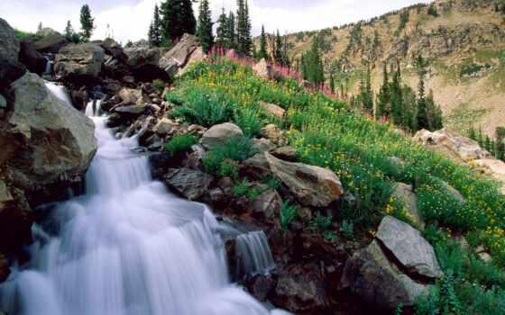 park, national, свадебный, весна, гранд, гора, teton, yalat, water, grand