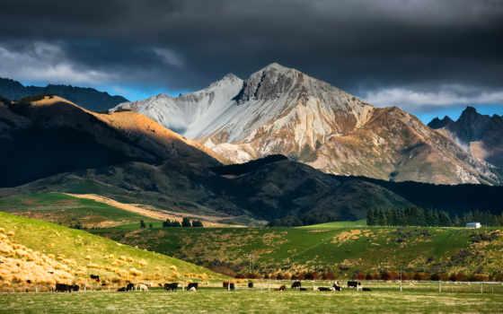 новая, zealand, горы